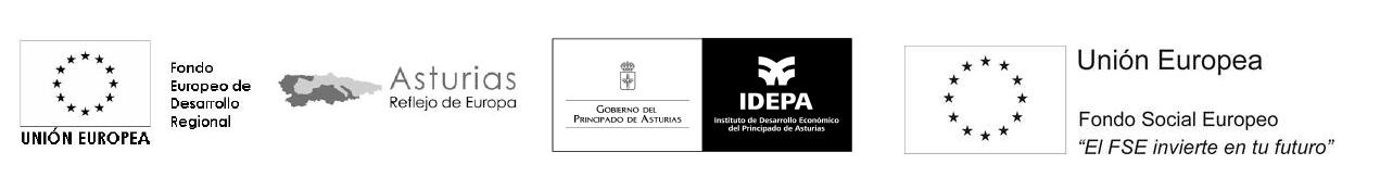 Fondo Europeo de Desarrollo Regional, Asturias reflejo de Europa, Gobierno del Principado de Asturias, IDEPA